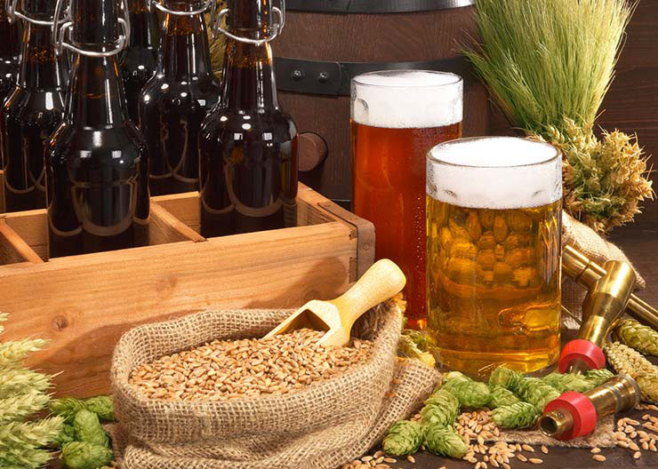 Bier, Gerste und Hopfen